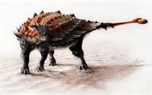 New Species Of Armored Dinosaur Found