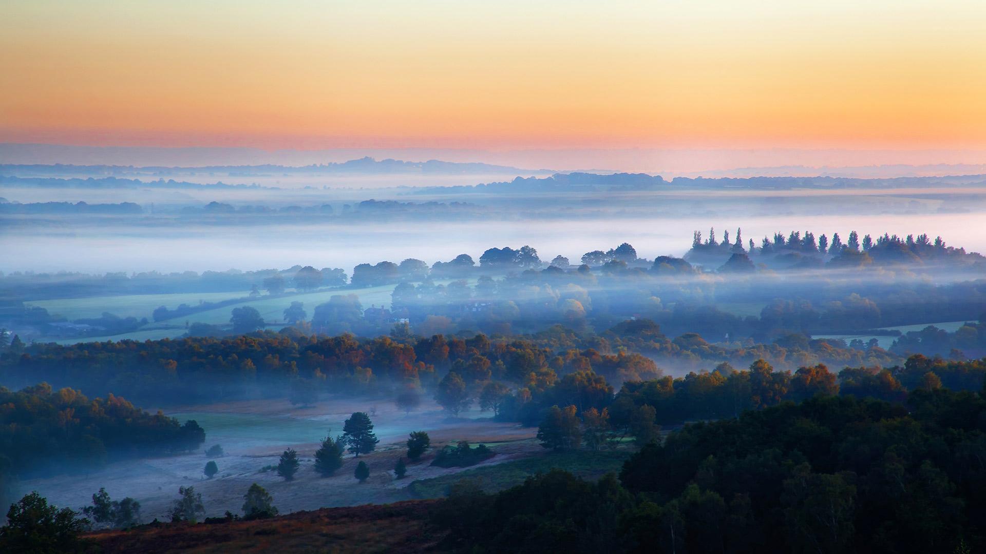 「アシュダウンの森」イギリス, イースト・サセックス (© Tim Stocker Photography/Getty Images)