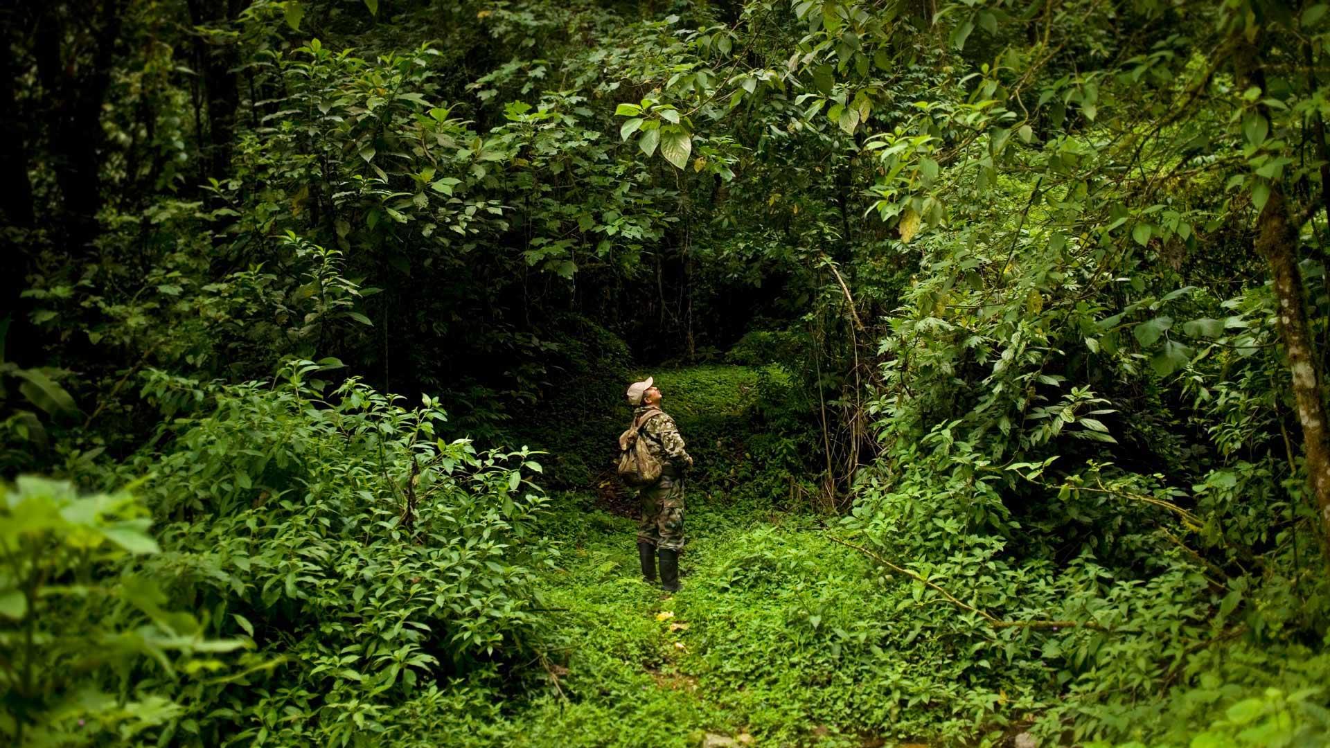 「ジャングルの中のパークレンジャー」メキシコ, エル・トリウンフォ生物圏保護区 (© Chico Sanchez/Aurora Photos)
