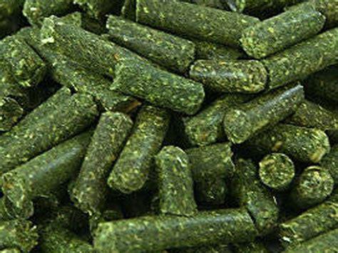 alfalfa pellets picture 18
