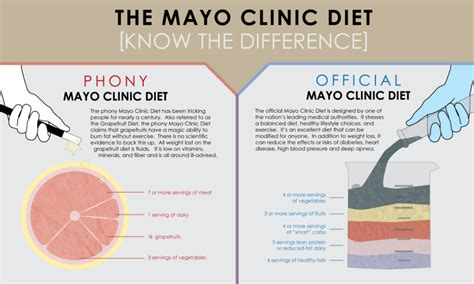 foods that build muscle mayo clinic picture 2