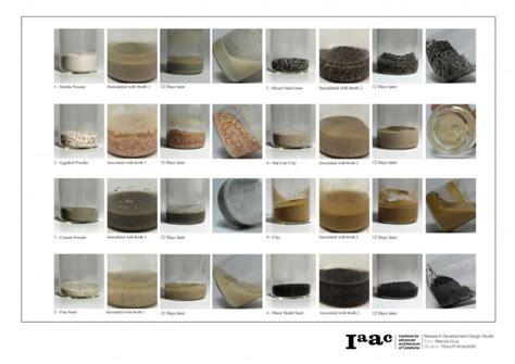 microbial calcium carbonate precipitation picture 5
