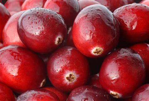cranberries and bladder infections and babies picture 5