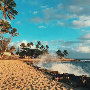 beach adventure picture 6