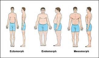 which type of lipo 6 can make muscles picture 3