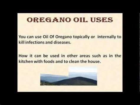 oil of oregano how to fight chlamydia picture 5