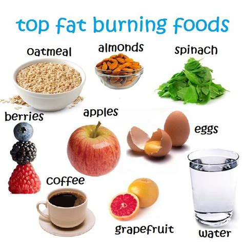 food and fat burning picture 7