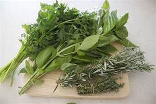 herbs that prevent erections picture 6