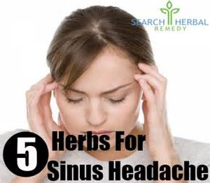 herbal remedies for sinus headaches picture 7