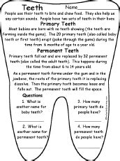 first grade theme learning about teeth picture 19