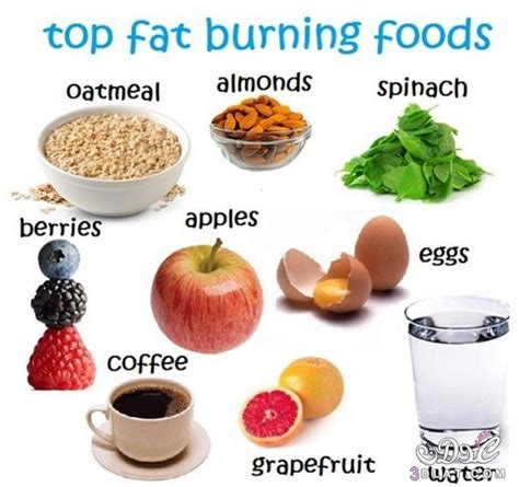 Nine fat burning foods picture 3