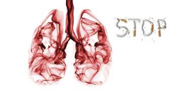 smoke in the lungs picture 6