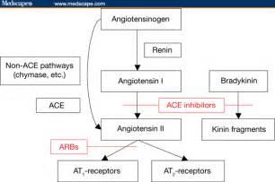 natural aldosterone blockers picture 2