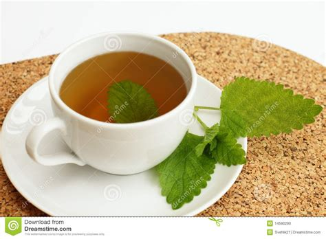 Cha time herbal tea picture 1