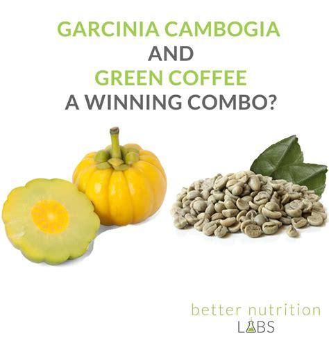 garcinia cambogia green coffee picture 13
