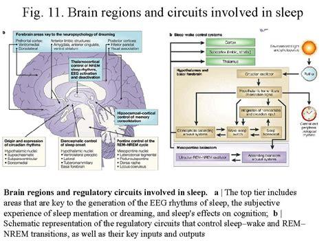 choking at during sleep picture 11