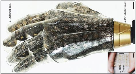 artificial skin picture 9
