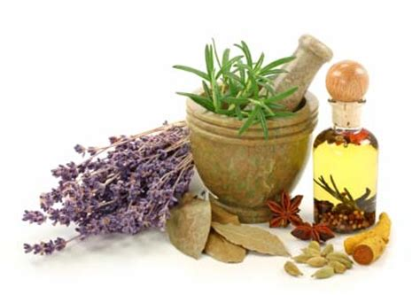 medical herbal treatments picture 18