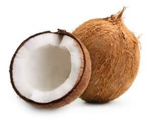 coconut picture 2