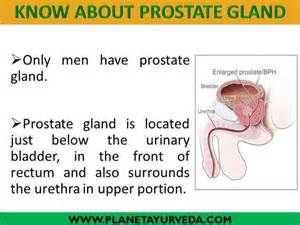 2014 best herbs for the prostate picture 6