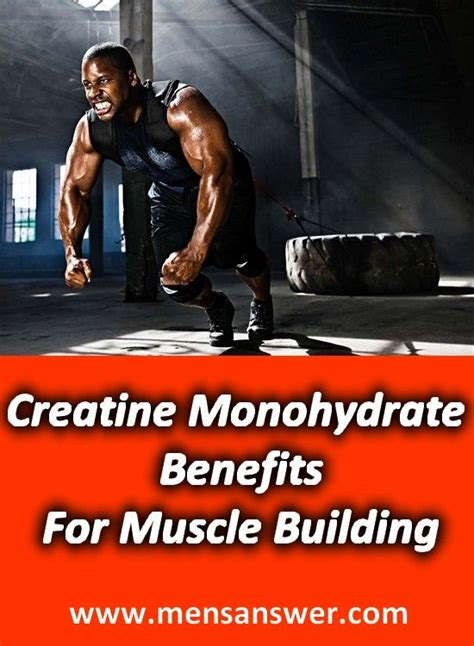 creatine muscle building picture 6
