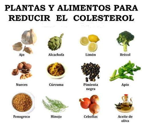 herbal medicine for cholesterol picture 6