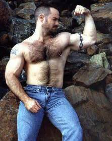 muscle bear hair picture 1