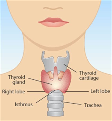 alternative for thyroid problems picture 10
