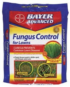 lawn fungus control picture 9