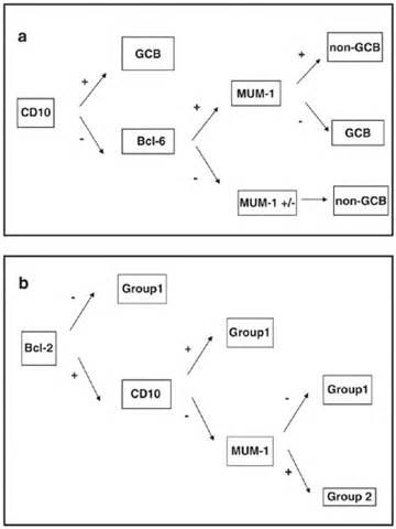 define abnormal heterogeneous echo pattern in thyroid picture 9