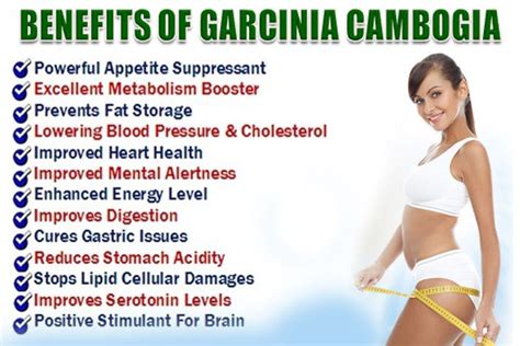 cheapest garcinia cambogia benefits picture 6