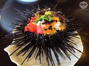 sea urchin cholesterol picture 6
