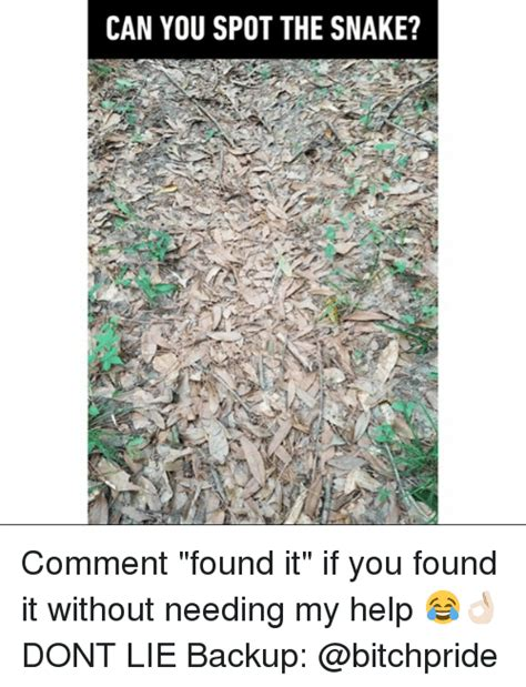 what would be the spot found on a picture 6