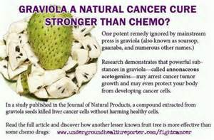 Herbal cures for cancer picture 6