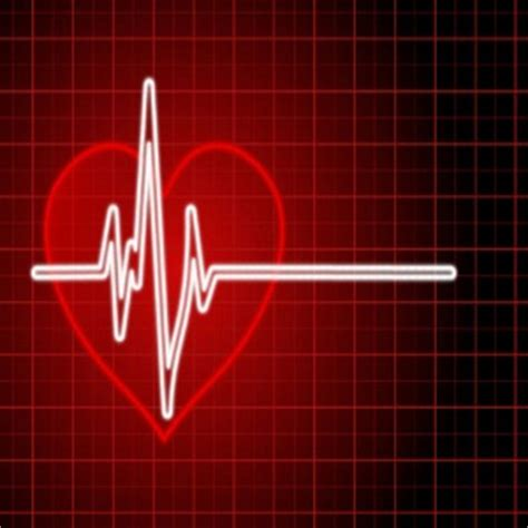 fast heart beat and dietrine picture 5