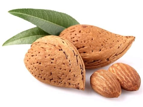 Almonds and cholesterol picture 5