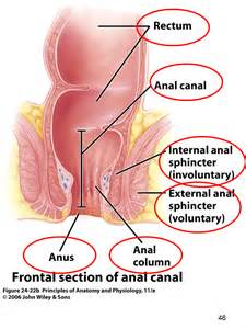 symptoms of intestinal blockage picture 15