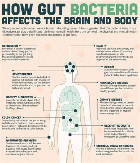 probiotics and healthy gut bacteria picture 1