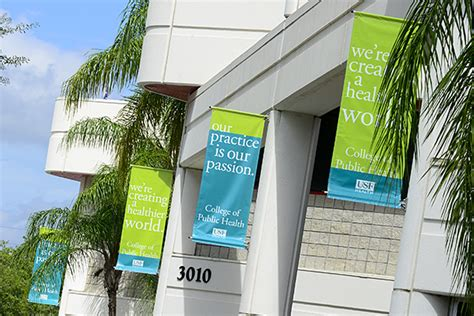 college of public health university south florida picture 4