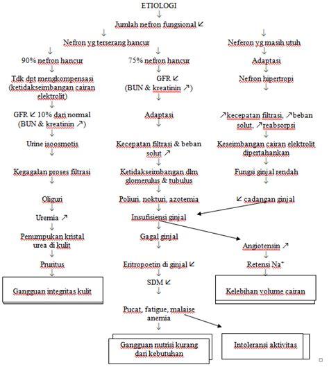 askep leukemia akut picture 18