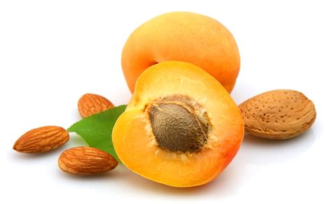 apricots health picture 2
