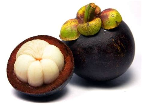 weight loss 2014 garcinia picture 7