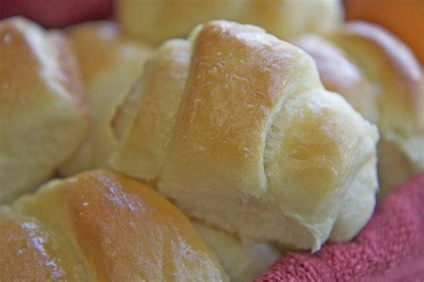yeast roll recipies picture 10