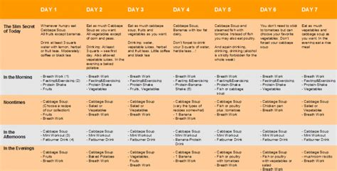 cabbage soup diet plan for free picture 9