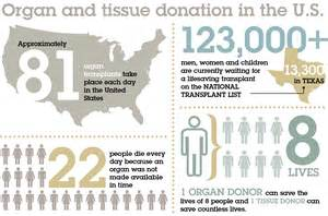 donor liver transplant stipulations picture 14