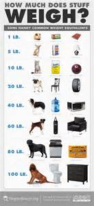 home items for weight picture 6