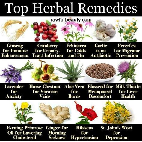 what all natural medications work by binding to picture 4