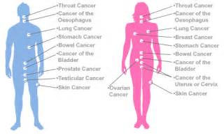 different types of skin cancer picture 18