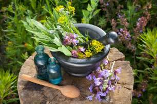 best hot herbal herbs picture 15