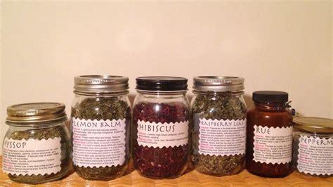 filipino herbal remedies picture 6